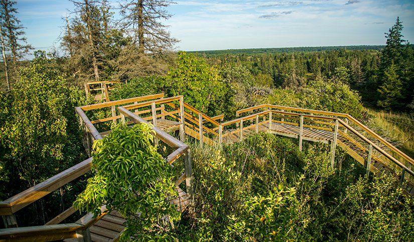 Un Guide Incontournable pour les Parcs Provinciaux du Manitoba